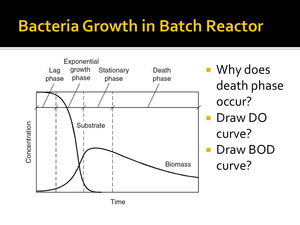  Why does death phase occur?  Draw DO curve?  Draw BOD curve?