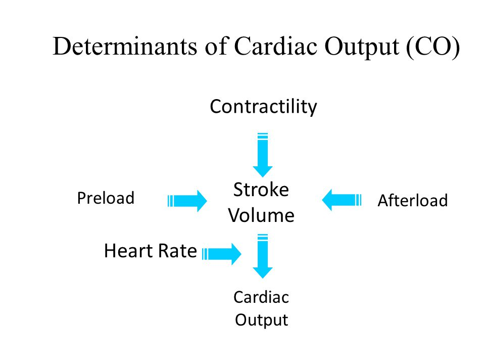 Definitions  Preload  amount of stretch on the ventricular myocardium prior to contraction  Afterload  the arterial pressure (or some other measur