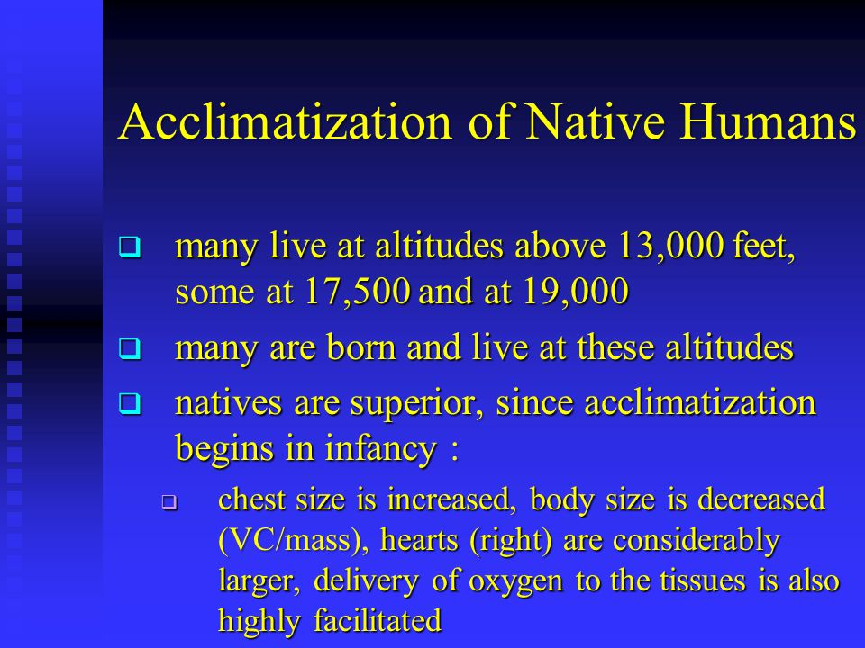 Acclimatization of Native Humans  many live at altitudes above 13,000 feet, some at 17,500 and at 19,000  many are born and live at these altitudes  natives are superior, since acclimatization begins in infancy :  chest size is increased, body size is decreased (VC/mass), hearts (right) are considerably larger, delivery of oxygen to the tissues is also highly facilitated