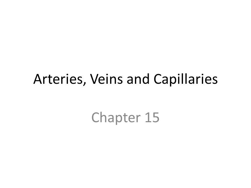 Arteries, Veins and Capillaries Chapter 15