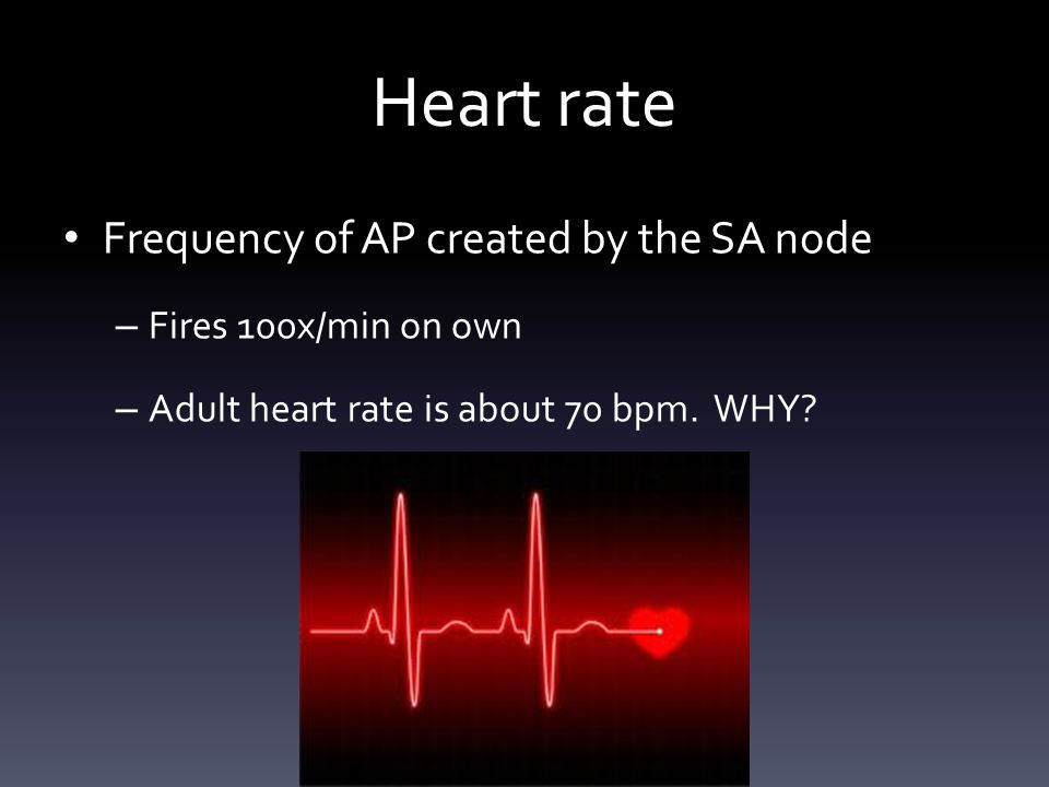 Heart rate Frequency of AP created by the SA node – Fires 100x/min on own – Adult heart rate is about 70 bpm.