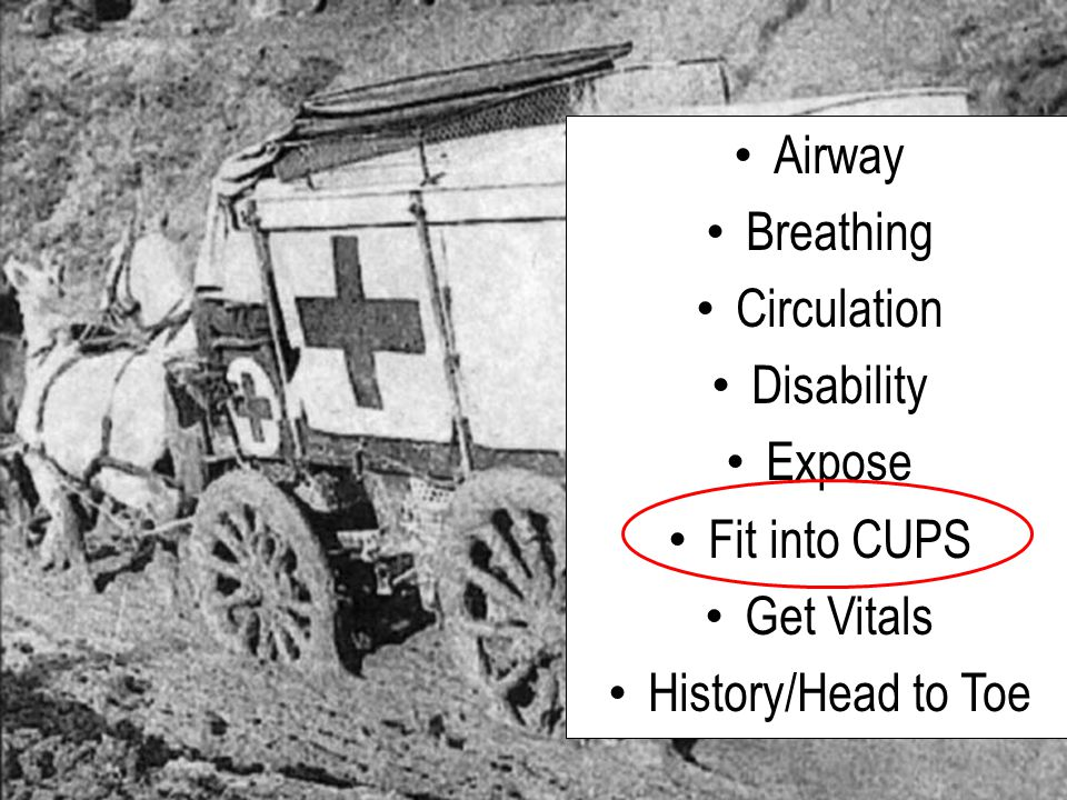 Airway Breathing Circulation Disability Expose Fit into CUPS Get Vitals History/Head to Toe