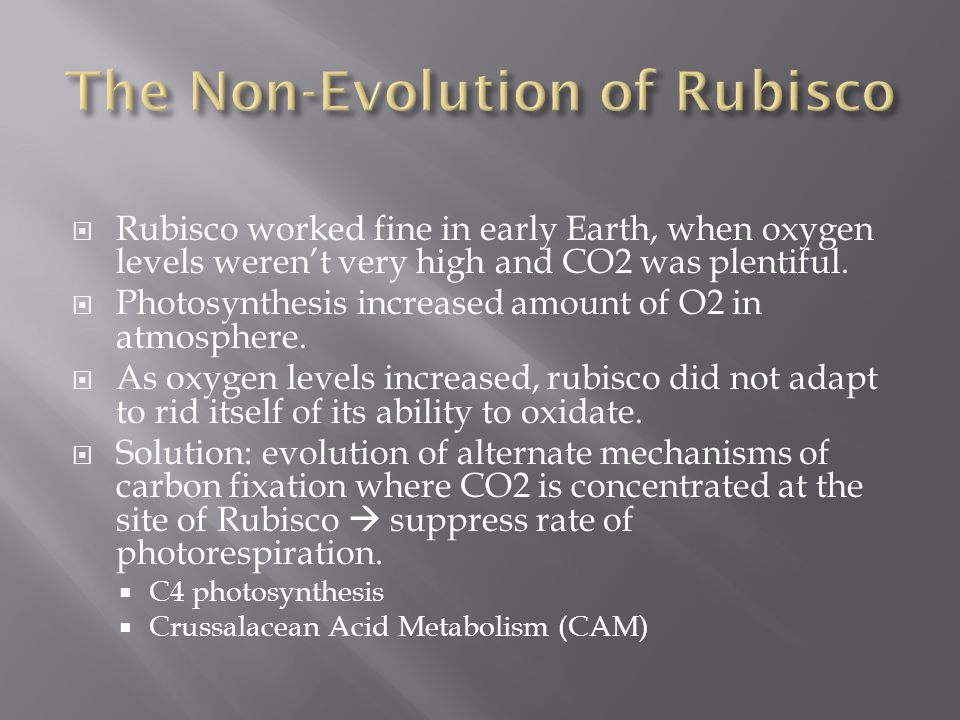  Rubisco worked fine in early Earth, when oxygen levels weren't very high and CO2 was plentiful.