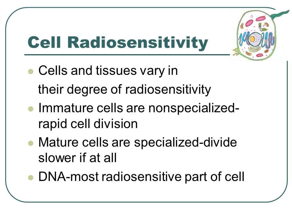 Cell Survival and Recovery LD 50/30 Adults-3-4 Gy (300-400 rad) Recovery may occur