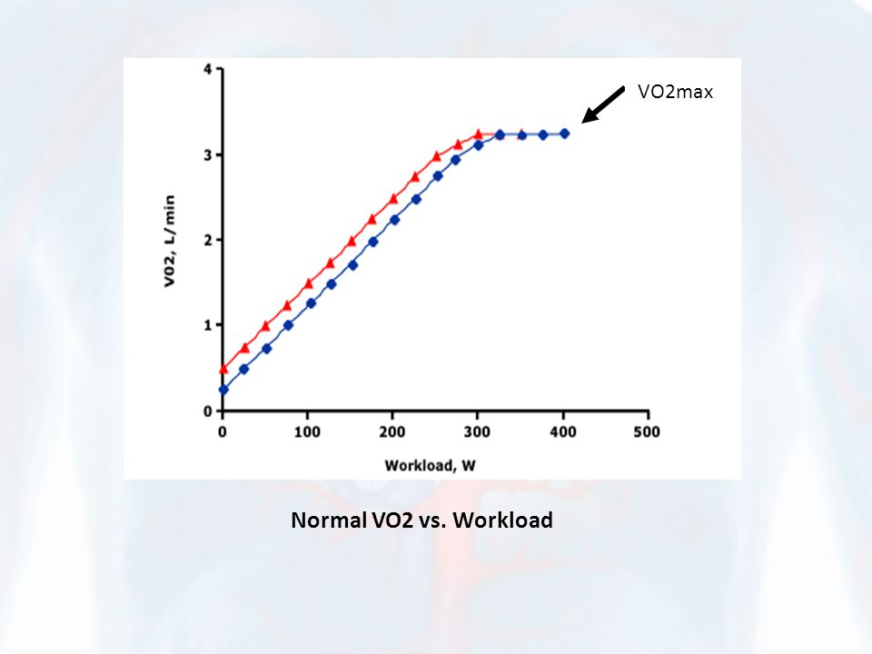 Normal VO2 vs. Workload VO2maxx