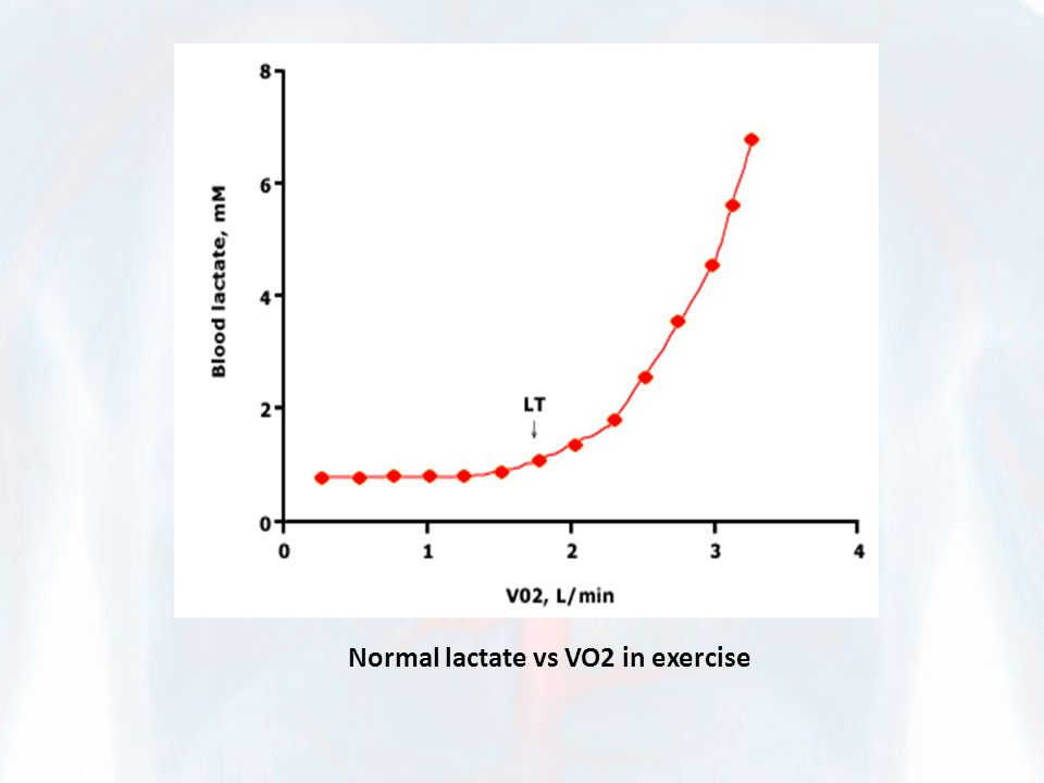 Normal lactate vs VO2 in exercise