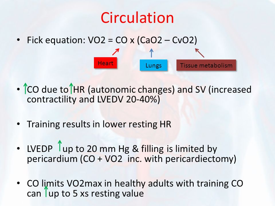 Circulation Fick equation: VO2 = CO x (CaO2 – CvO2) CO due to HR (autonomic changes) and SV (increased contractility and LVEDV 20-40%) Training results in lower resting HR LVEDP up to 20 mm Hg & filling is limited by pericardium (CO + VO2 inc.
