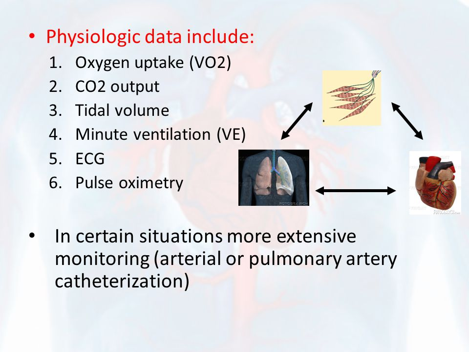 Pulmonary circulation/Ventilation PAP rarely exceeds 30 mm Hg at peak exercise in normal individuals This is done by PVR by passive dilation and due to NO effect Minute ventilation (VE) rises due increase RR TV increase in hyperbolic relation with exercise Training decreases VE for any given VO2