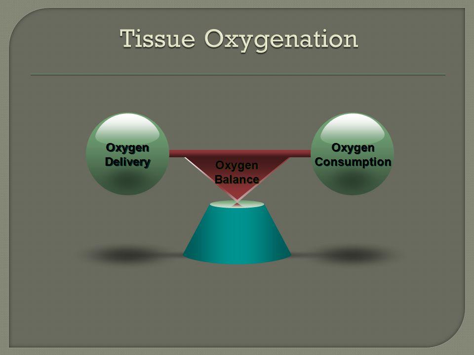 Oxygen Balance Oxygen Balance Oxygen Delivery Oxygen Delivery Oxygen Consumption
