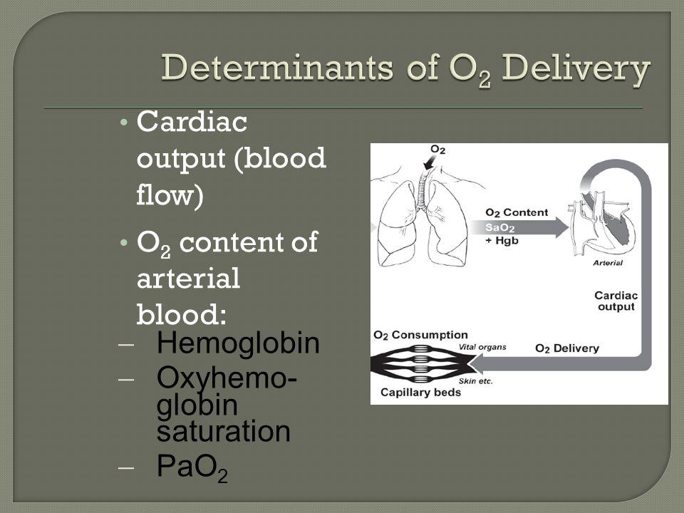 Cardiac output (blood flow) O 2 content of arterial blood:  Hemoglobin  Oxyhemo- globin saturation  PaO 2