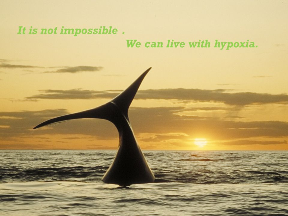 It is not impossible. We can live with hypoxia.