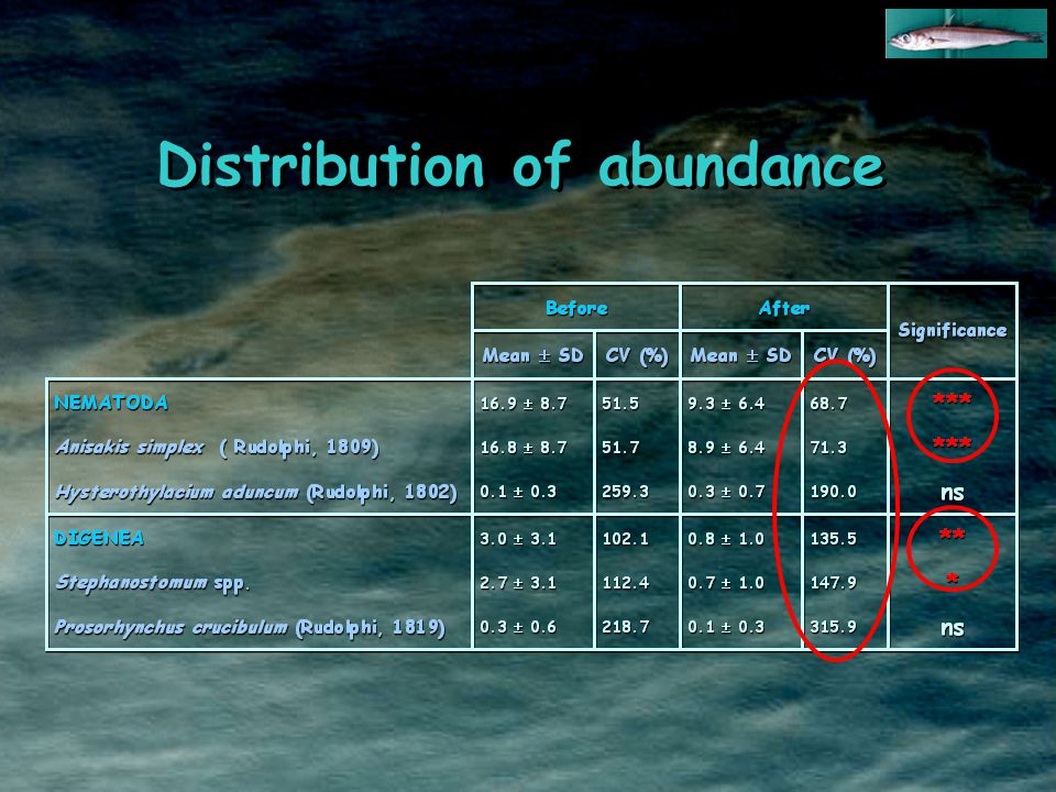 Distribution of abundance