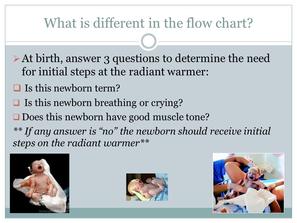 What is different in the flow chart?  At birth, answer 3 questions to determine the need for initial steps at the radiant warmer:  Is this newborn t