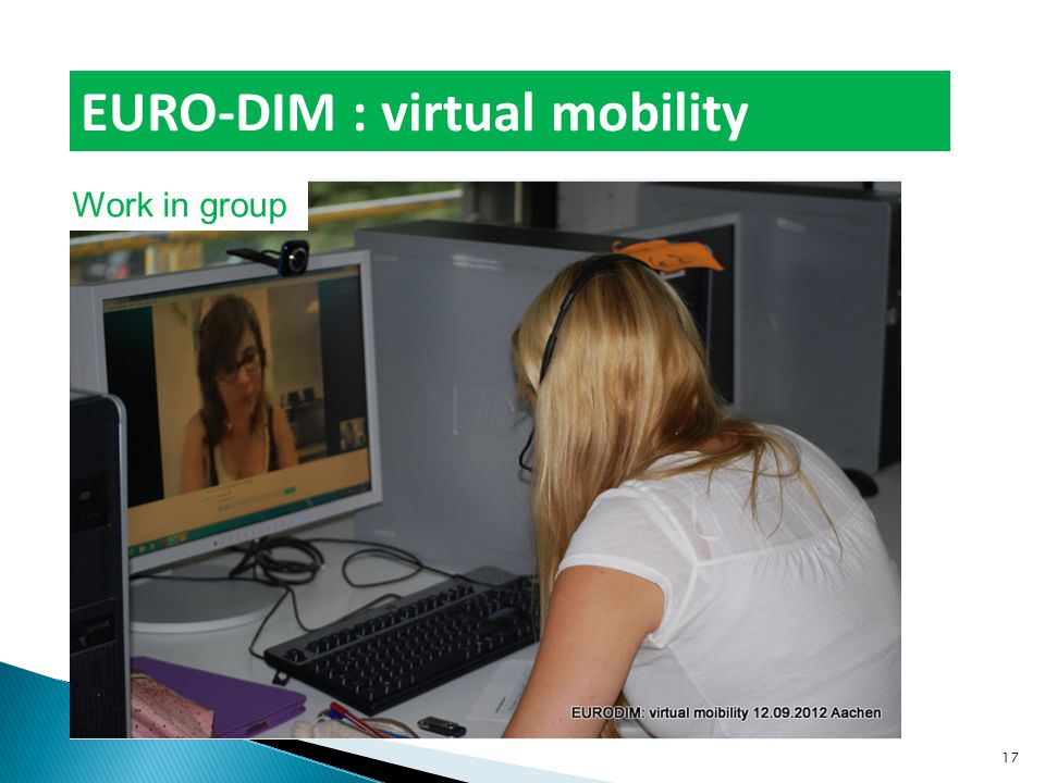Work in group EURO-DIM : virtual mobility 17