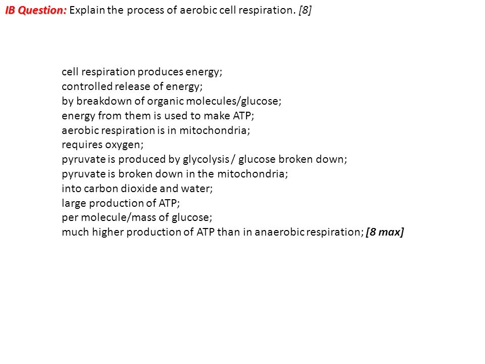 IB Question: IB Question: Explain the process of aerobic cell respiration. [8] cell respiration produces energy; controlled release of energy; by brea