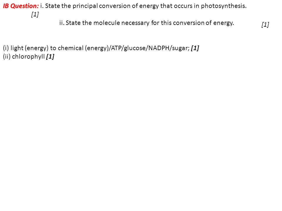 IB Question: IB Question: i. State the principal conversion of energy that occurs in photosynthesis. [1] ii. State the molecule necessary for this con