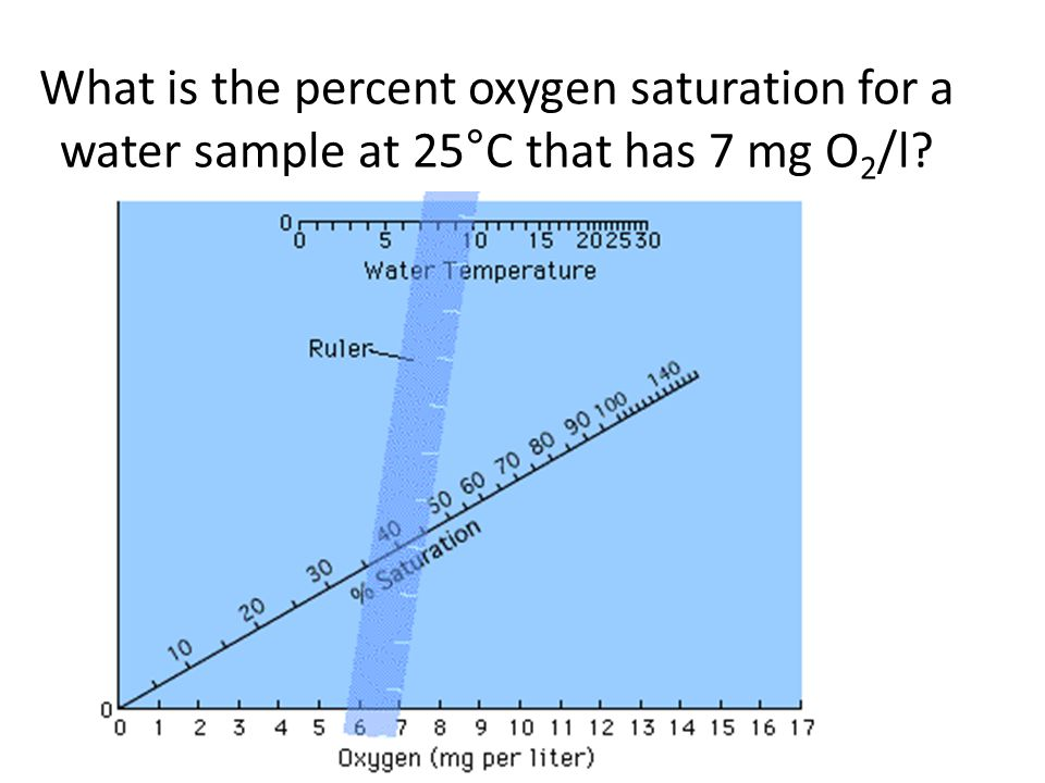 What is the percent oxygen saturation for a water sample at 25°C that has 7 mg O 2 /l?