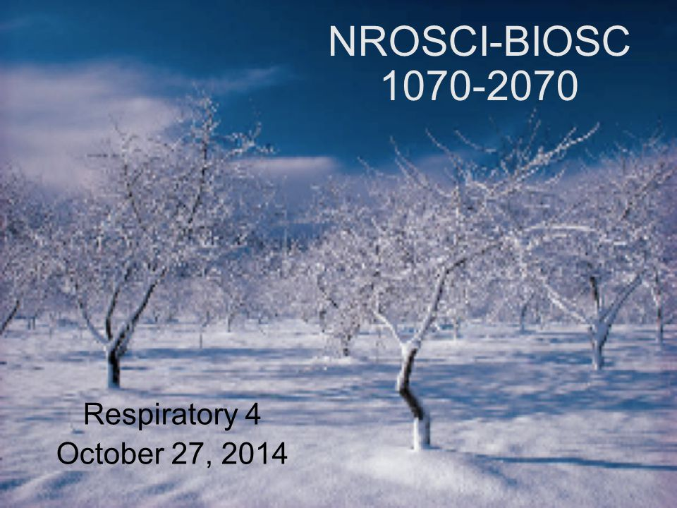 NROSCI-BIOSC 1070-2070 Respiratory 4 October 27, 2014