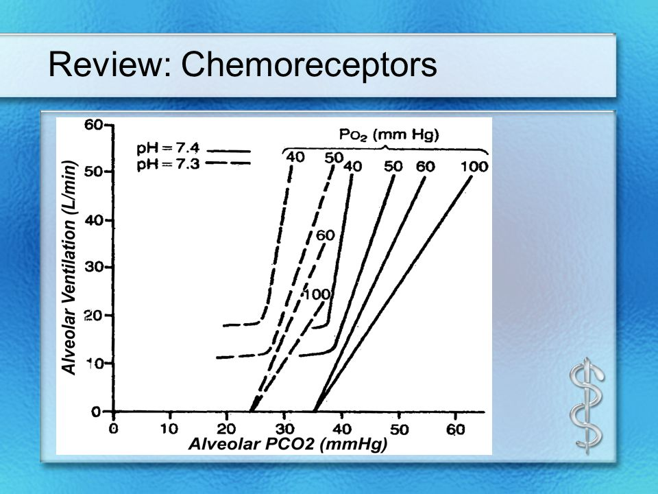 Review: Chemoreceptors