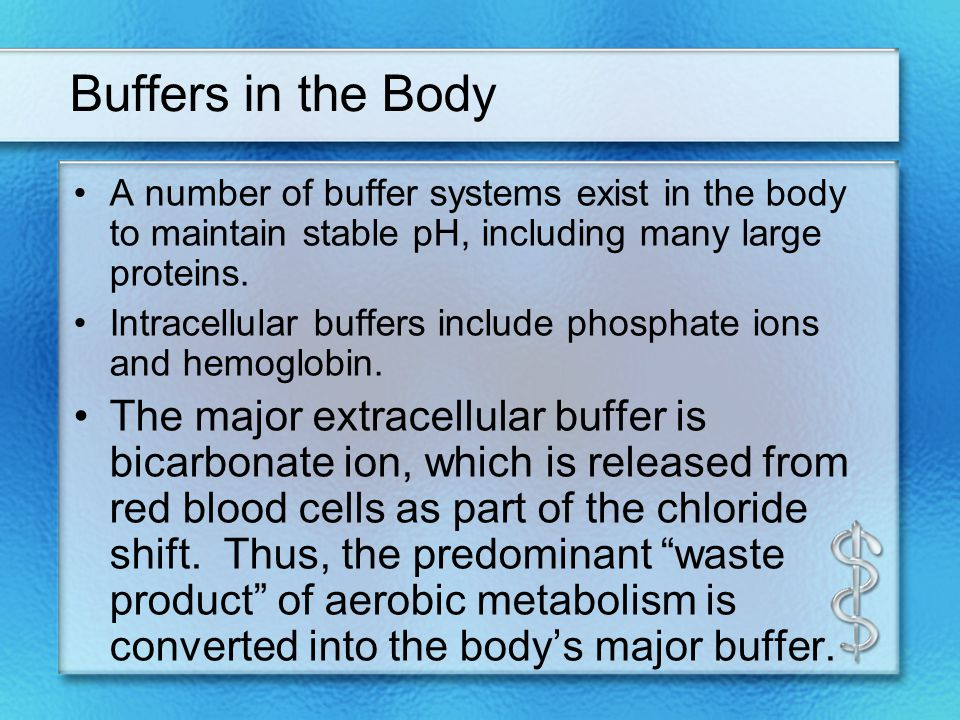 Buffers in the Body A number of buffer systems exist in the body to maintain stable pH, including many large proteins.