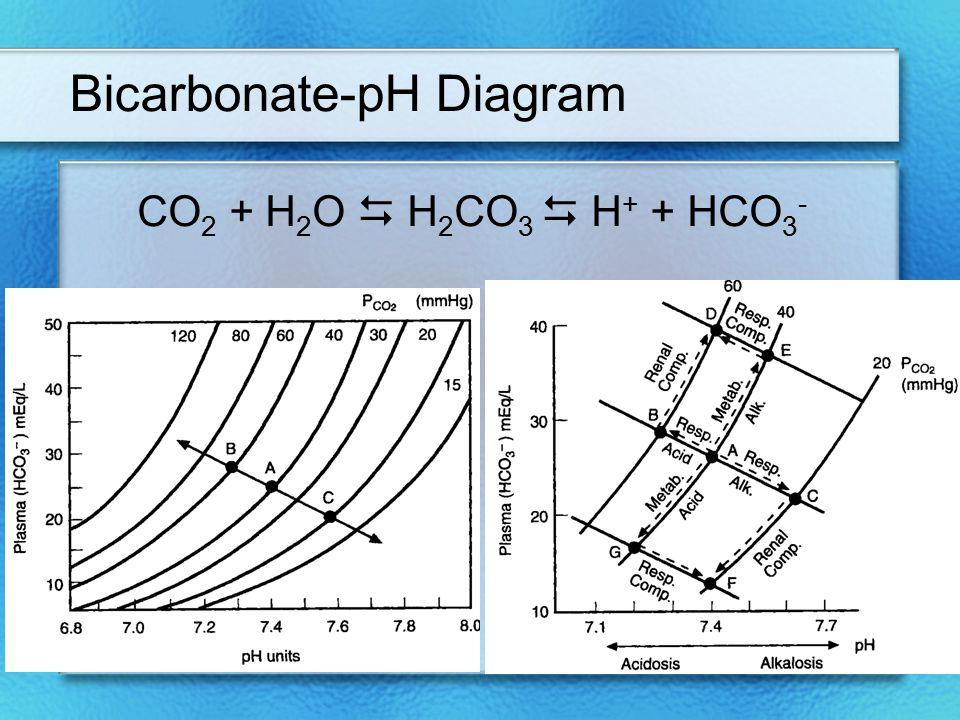 Bicarbonate-pH Diagram CO 2 + H 2 O  H 2 CO 3  H + + HCO 3 -
