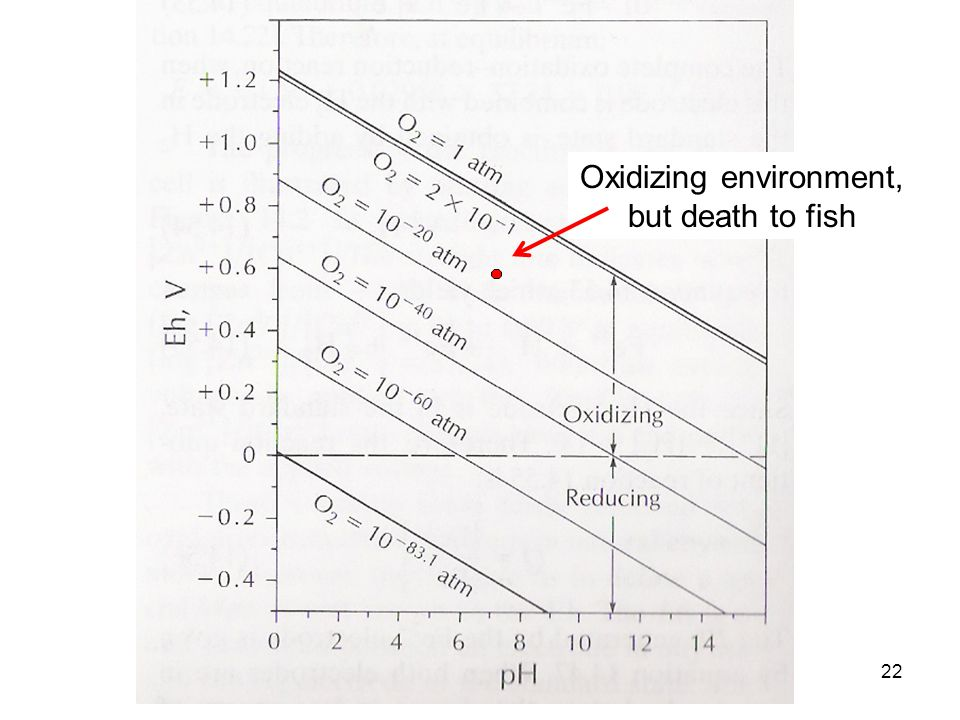 22 Oxidizing environment, but death to fish