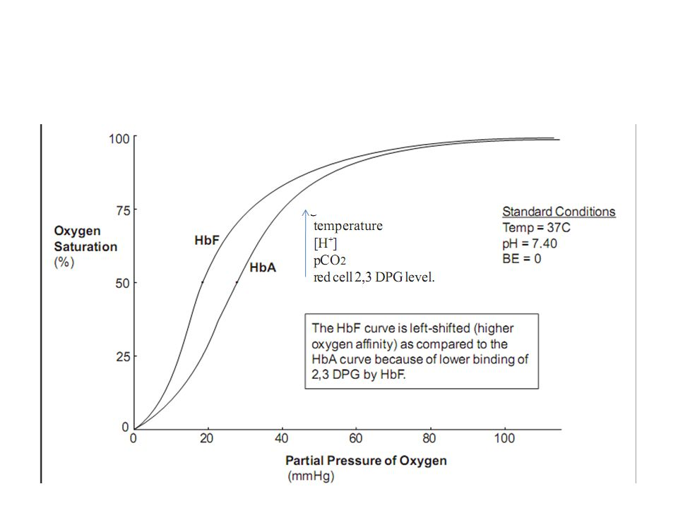 PGE1 – peripheral vasodilation – hypotension& cutaneous flushing Separate IV line should be secured Hypotension treated by 10-20ml/kg bolus of NS,RL,5%albumin Remeasure ABG,reasses capillary refill& vitalsigns within 15 to 30 min of starting PGE1 infusion