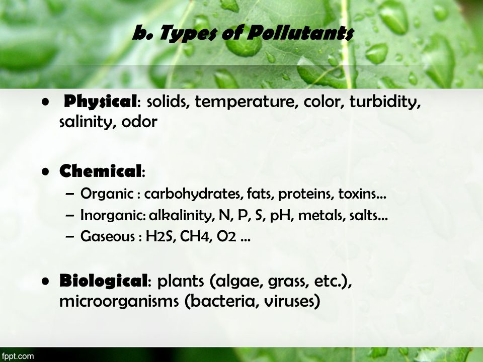 b. Types of Pollutants Physical : solids, temperature, color, turbidity, salinity, odor Chemical : –Organic : carbohydrates, fats, proteins, toxins… –