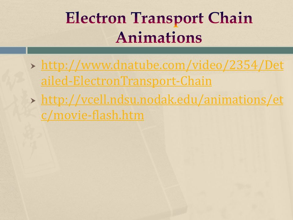  http://www.dnatube.com/video/2354/Det ailed-ElectronTransport-Chain http://www.dnatube.com/video/2354/Det ailed-ElectronTransport-Chain  http://vcell.ndsu.nodak.edu/animations/et c/movie-flash.htm http://vcell.ndsu.nodak.edu/animations/et c/movie-flash.htm