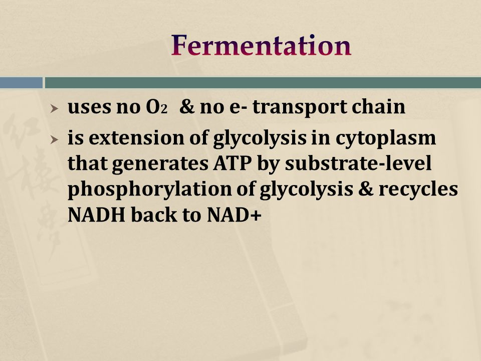 uses no O 2 & no e- transport chain  is extension of glycolysis in cytoplasm that generates ATP by substrate-level phosphorylation of glycolysis & recycles NADH back to NAD+