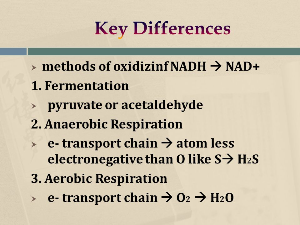  methods of oxidizinf NADH  NAD+ 1. Fermentation  pyruvate or acetaldehyde 2.