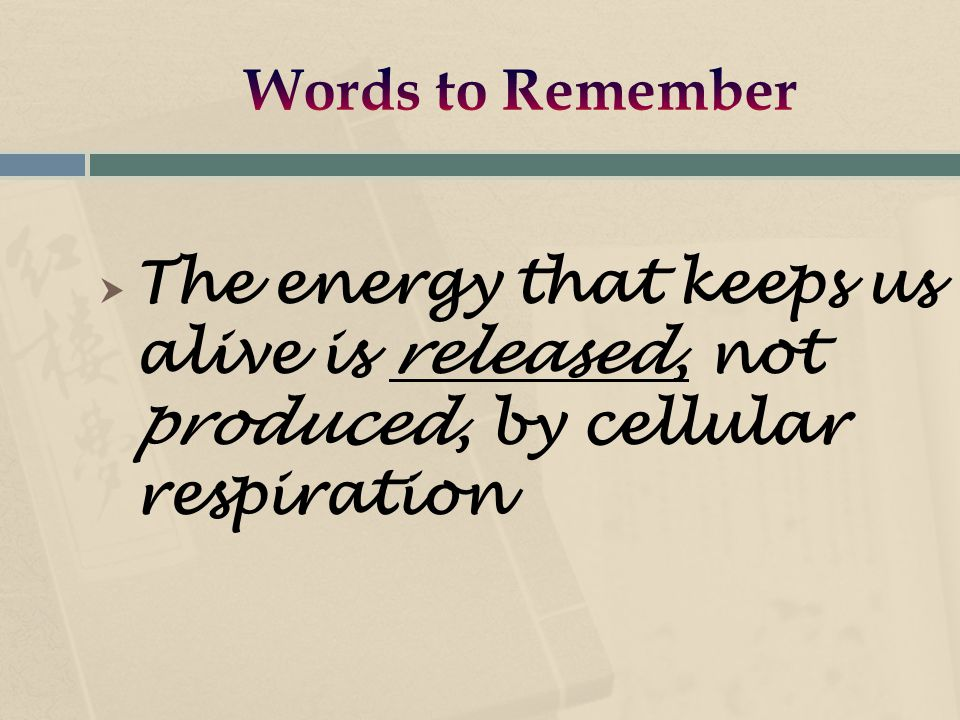  The energy that keeps us alive is released, not produced, by cellular respiration