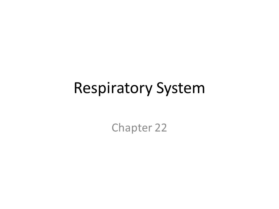 Respiratory System Chapter 22
