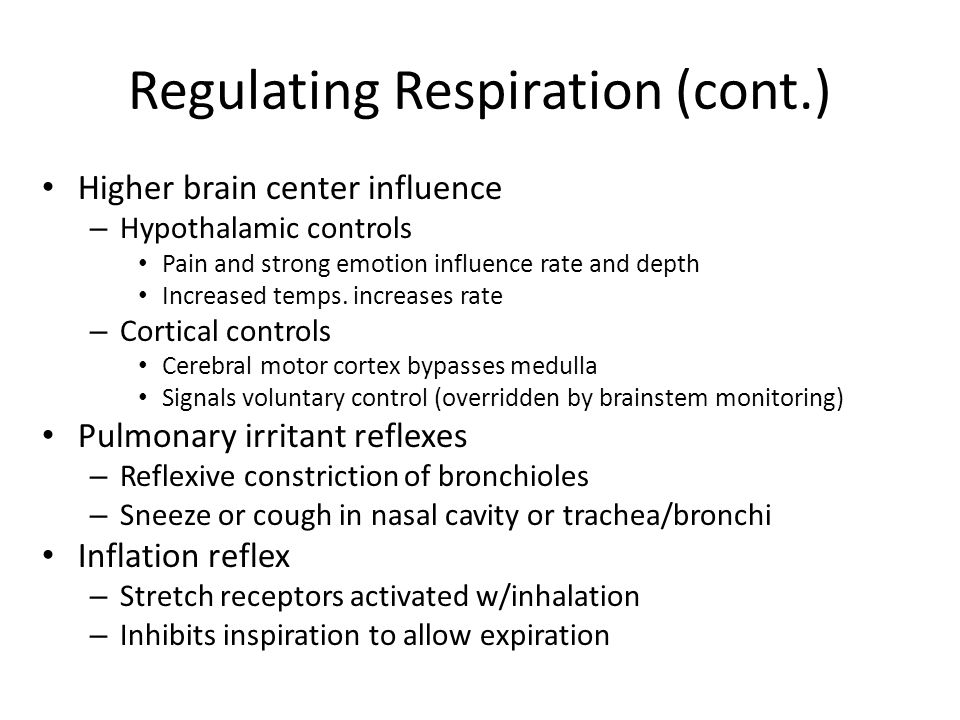 Regulating Respiration (cont.) Higher brain center influence – Hypothalamic controls Pain and strong emotion influence rate and depth Increased temps.