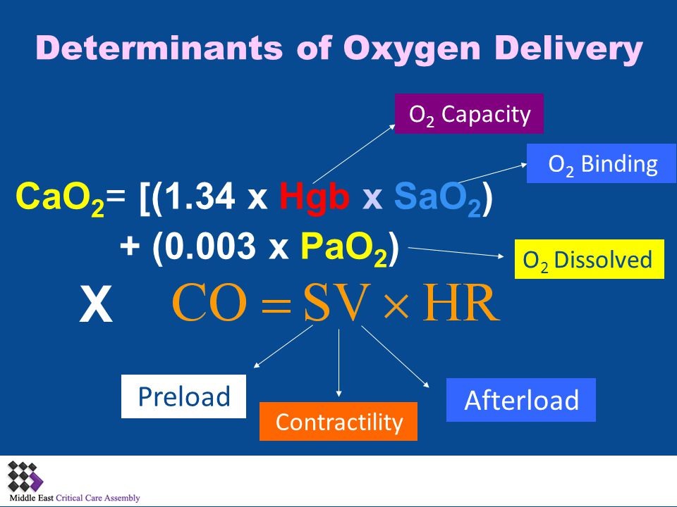 Preload Contractility Determinants of Oxygen Delivery Afterload O 2 Capacity O 2 Dissolved O 2 Binding X CaO 2 = [(1.34 x Hgb x SaO 2 ) + (0.003 x PaO 2 )