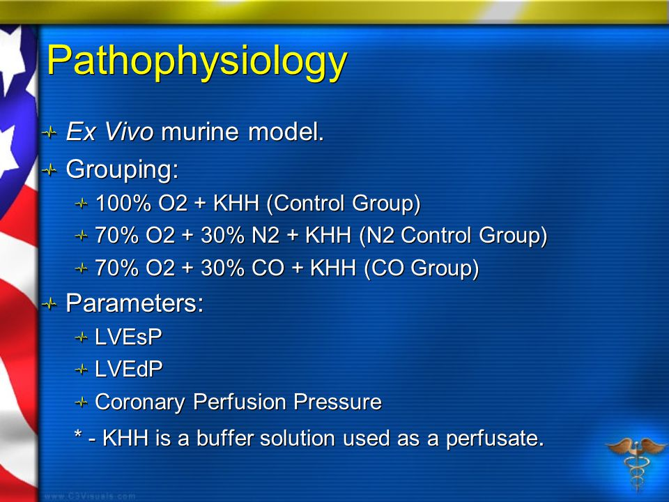 Pathophysiology Ex Vivo murine model. Grouping: 100% O2 + KHH (Control Group) 70% O2 + 30% N2 + KHH (N2 Control Group) 70% O2 + 30% CO + KHH (CO Group