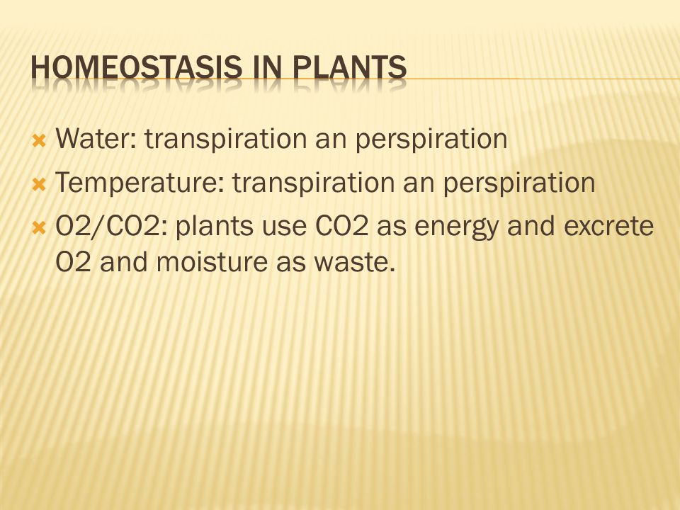  Water: transpiration an perspiration  Temperature: transpiration an perspiration  O2/CO2: plants use CO2 as energy and excrete O2 and moisture as