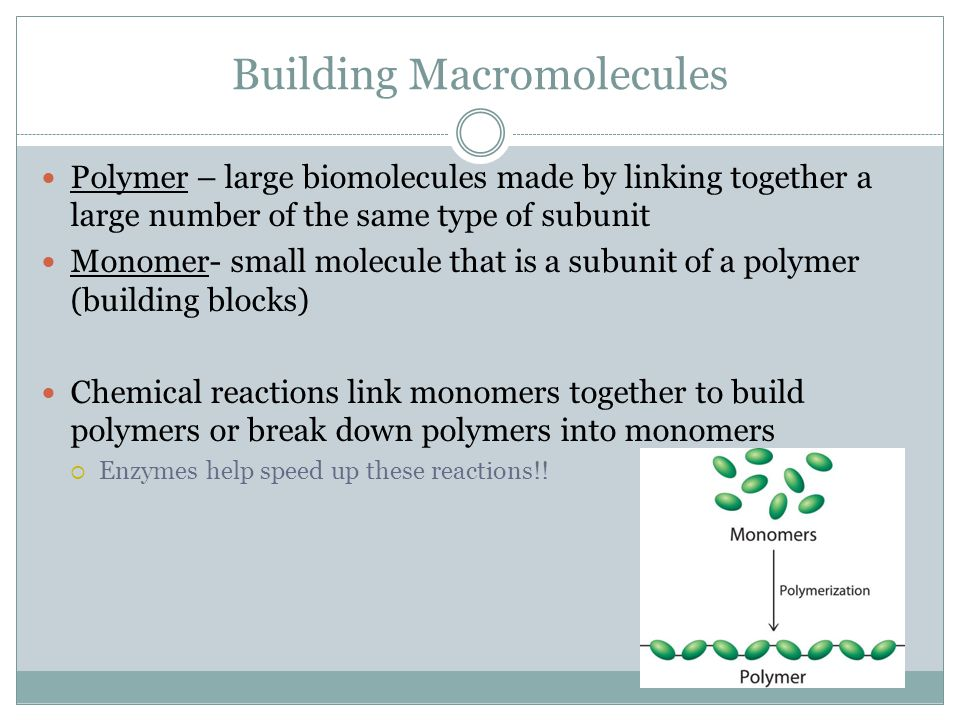 Building Macromolecules Polymer – large biomolecules made by linking together a large number of the same type of subunit Monomer- small molecule that