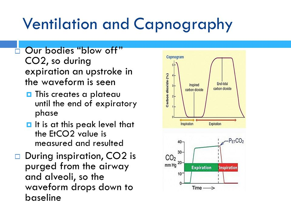 """Ventilation and Capnography  Our bodies """"blow off"""" CO2, so during expiration an upstroke in the waveform is seen  This creates a plateau until the e"""