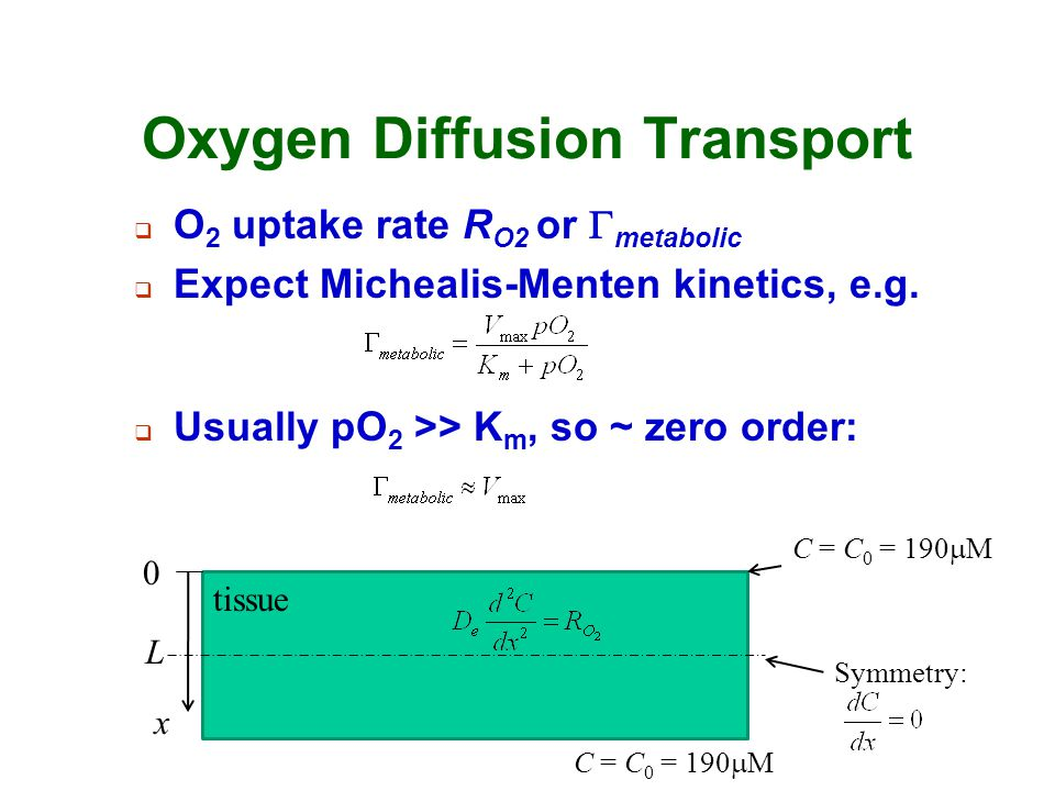 Oxygen Diffusion Transport  O 2 uptake rate R O2 or  metabolic  Expect Michealis-Menten kinetics, e.g. tissue x L 0  Usually pO 2 >> K m, so ~ zer