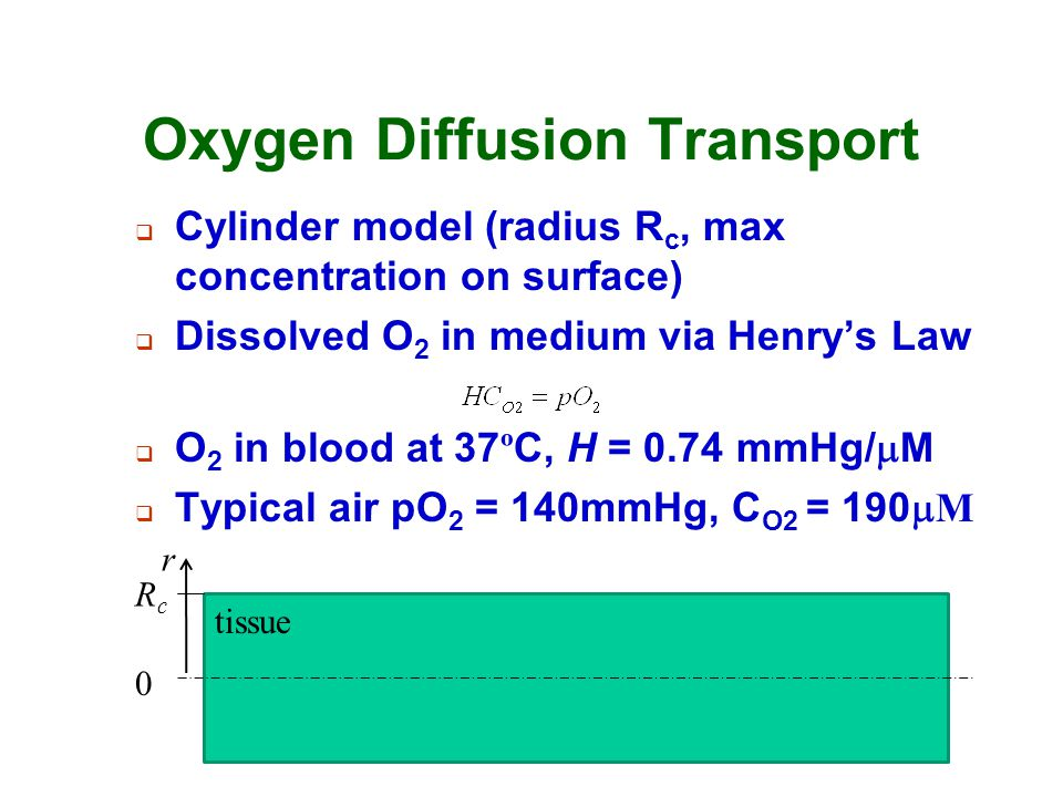 Oxygen Diffusion Transport  Cylinder model (radius R c, max concentration on surface)  Dissolved O 2 in medium via Henry's Law  O 2 in blood at 37