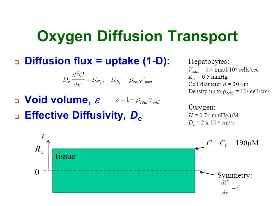 Oxygen Diffusion Transport  Diffusion flux = uptake (1-D): tissue  Void volume,   Effective Diffusivity, D e Hepatocytes: V max = 0.4 nmol/10 6 ce