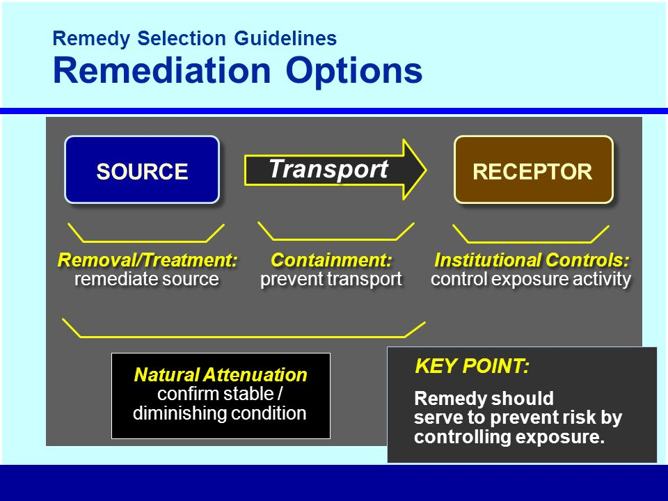 Remedy Selection Guidelines Remediation Options Natural Attenuation confirm stable / diminishing condition KEY POINT: Remedy should serve to prevent risk by controlling exposure.