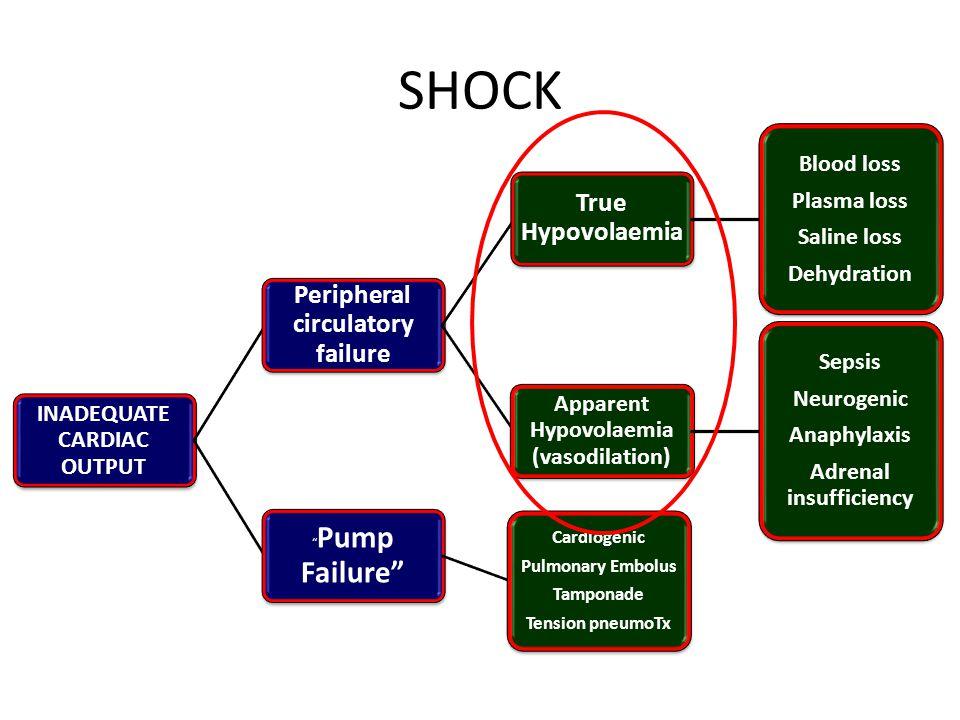 Concept of pathogenesis of physiologic changes in Multiple Trauma Trauma Inflammation Haemorrhage  Fibrinolysis Shock Tissue Hypoxia and Acidosis Activation of haemostasis & endothelium Coagulopathy