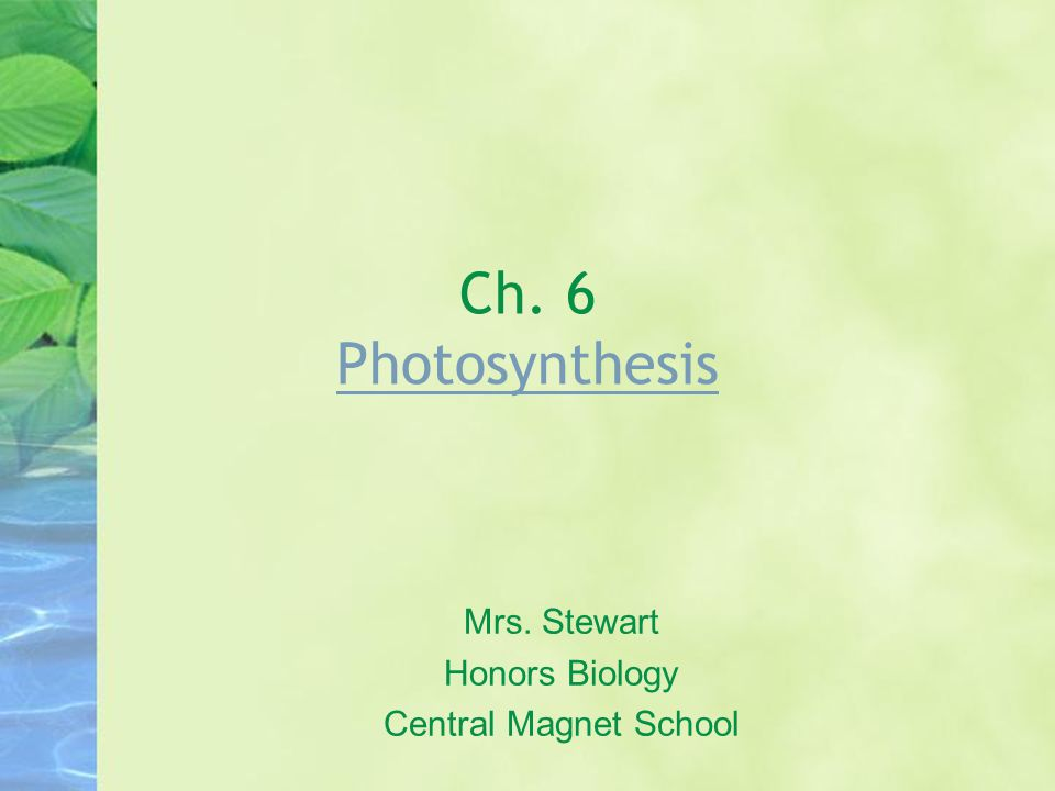 Ch. 6 Photosynthesis Photosynthesis Mrs. Stewart Honors Biology Central Magnet School