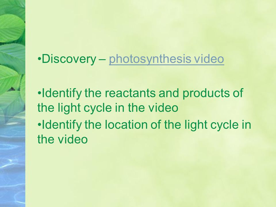 Discovery – photosynthesis videophotosynthesis video Identify the reactants and products of the light cycle in the video Identify the location of the