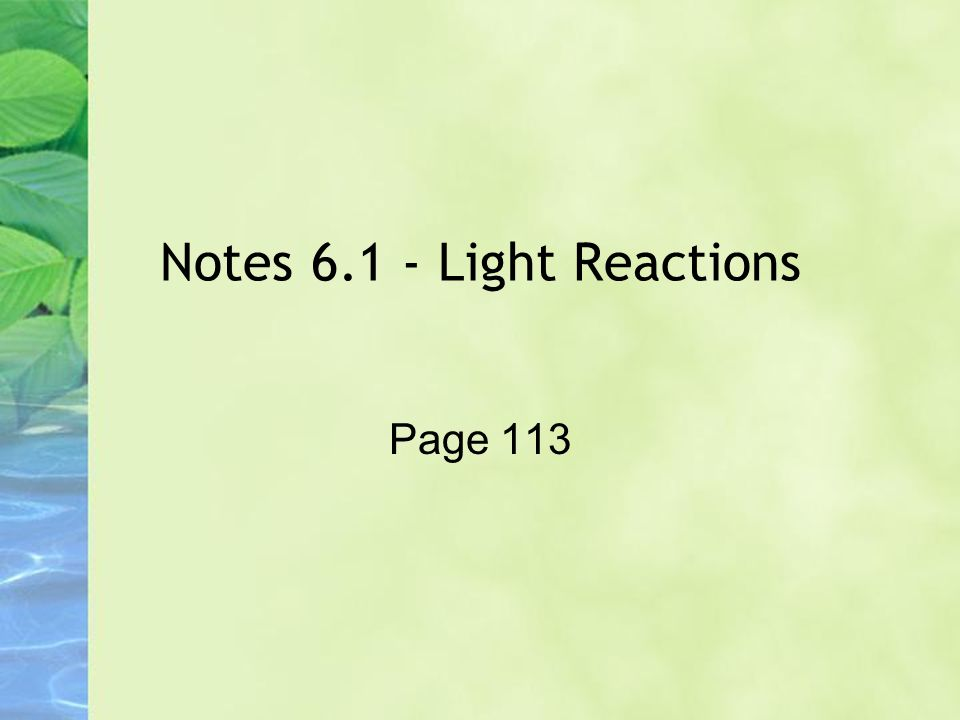 Notes 6.1 - Light Reactions Page 113