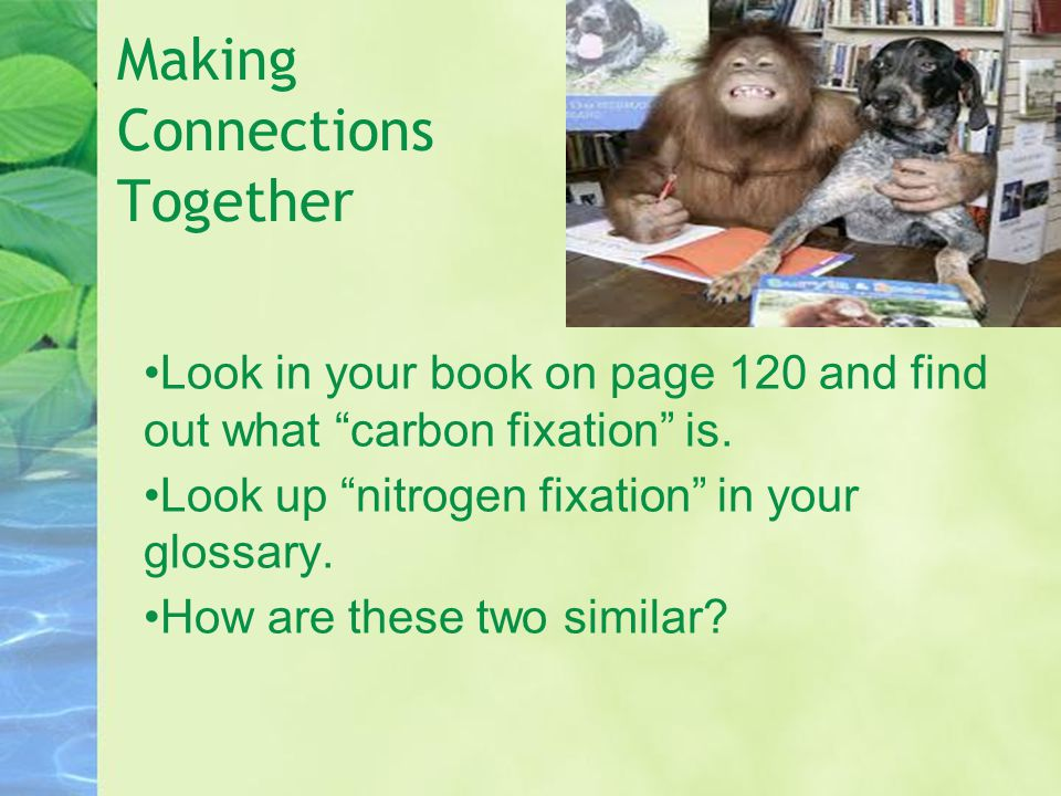 """Making Connections Together Look in your book on page 120 and find out what """"carbon fixation"""" is. Look up """"nitrogen fixation"""" in your glossary. How ar"""