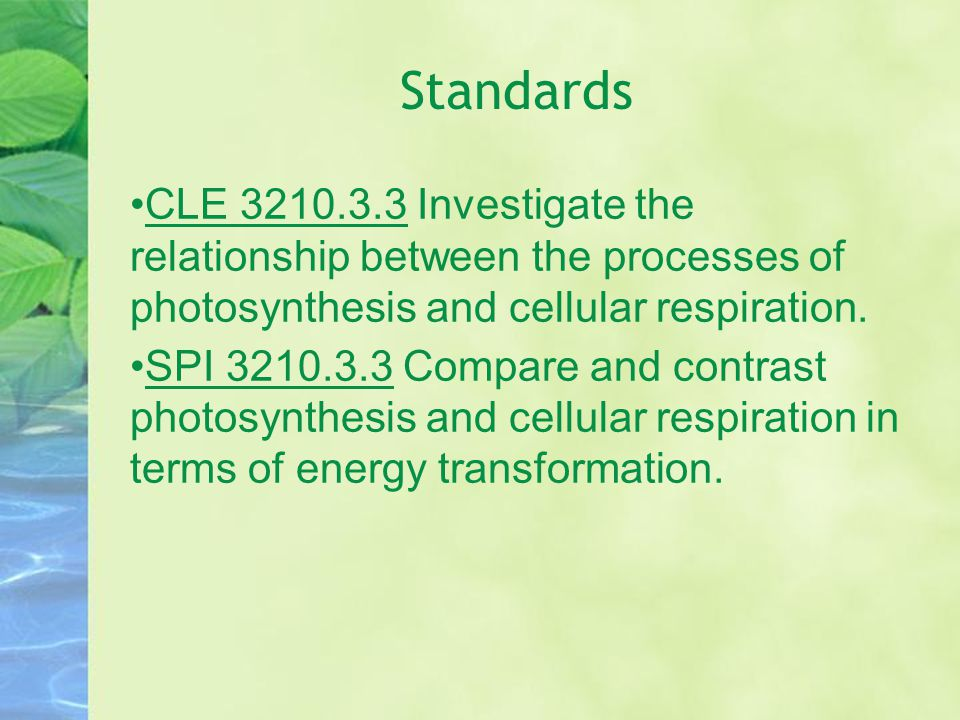 Standards CLE 3210.3.3 Investigate the relationship between the processes of photosynthesis and cellular respiration. SPI 3210.3.3 Compare and contras