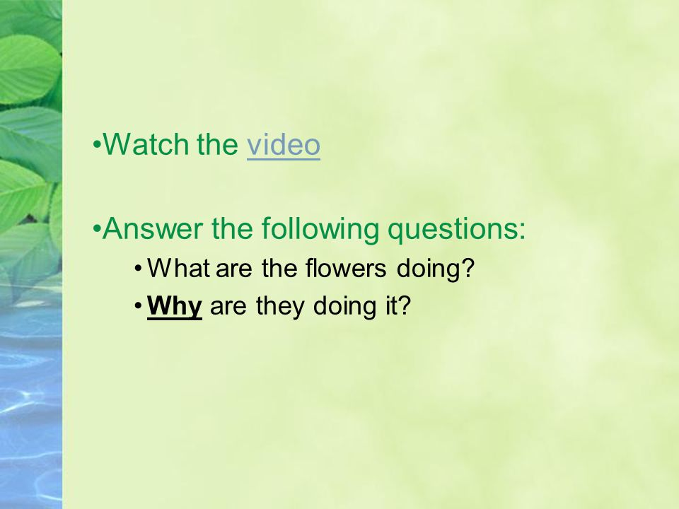 Watch the videovideo Answer the following questions: What are the flowers doing.